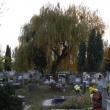 Kispesti temető (Fotó: Harmadik - panoramio.com)