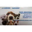 Papp Krisztina kutyakozmetikus