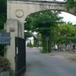 Pestszenterzsébeti temető