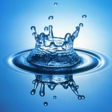 P.T.Q. Kft. - víz-gáz-fűtésszerelés, lakásfelújítás